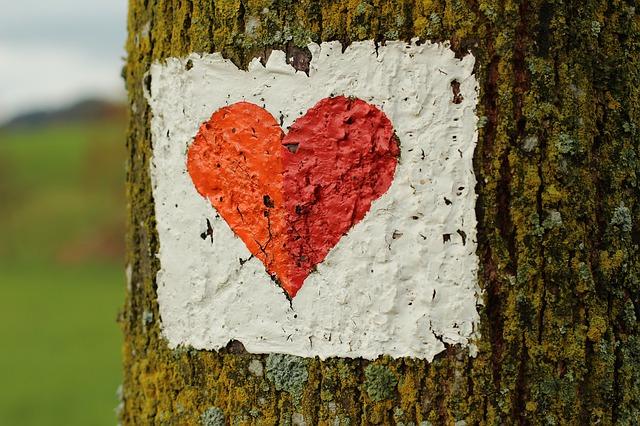 Love – Yet anothertake