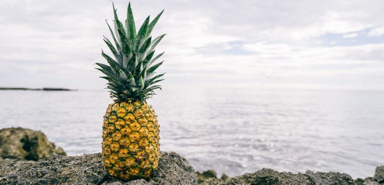 cropped-pineapple-1149047_960_720.jpg
