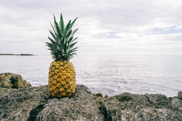 pineapple-1149047_960_720