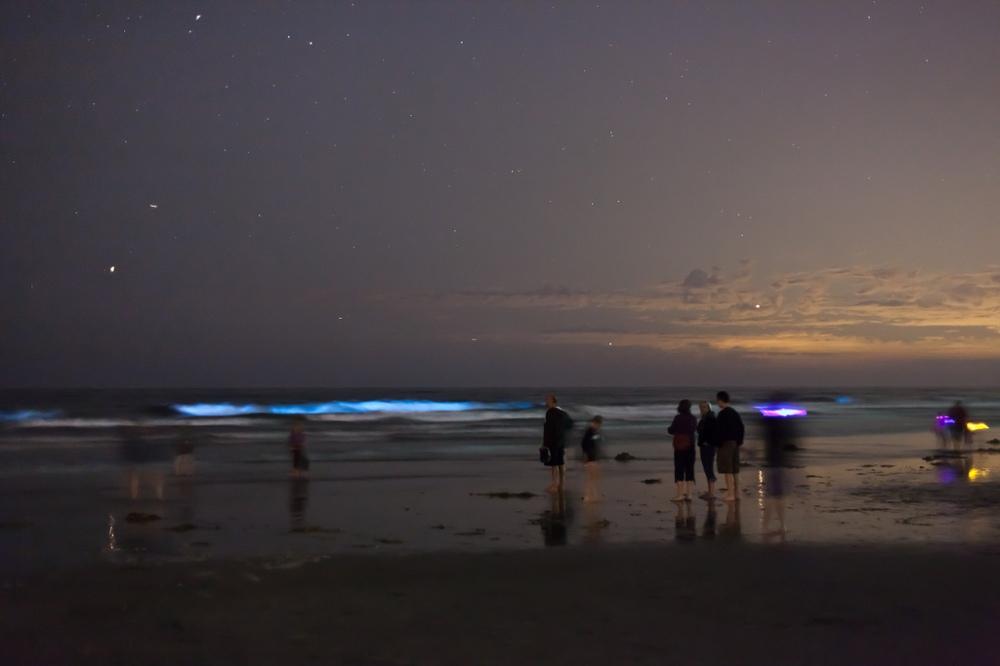 TRON Beach