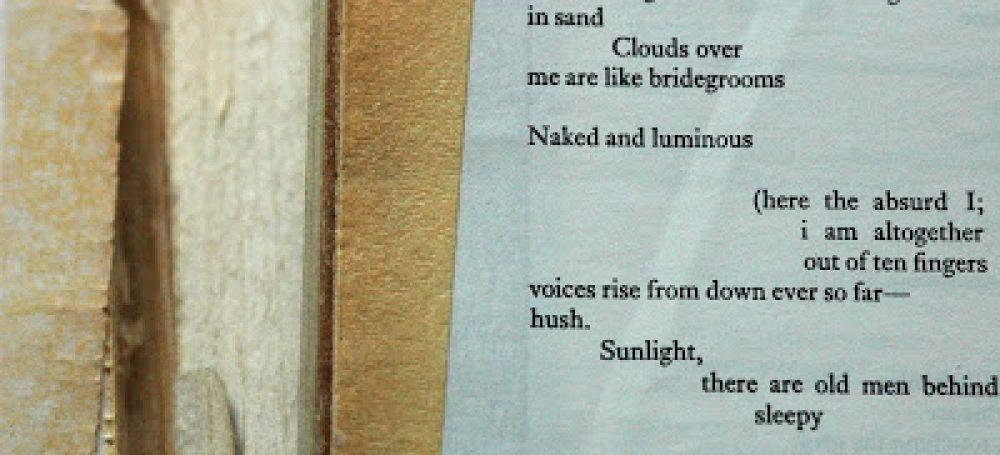 cropped-poetry-2.jpg