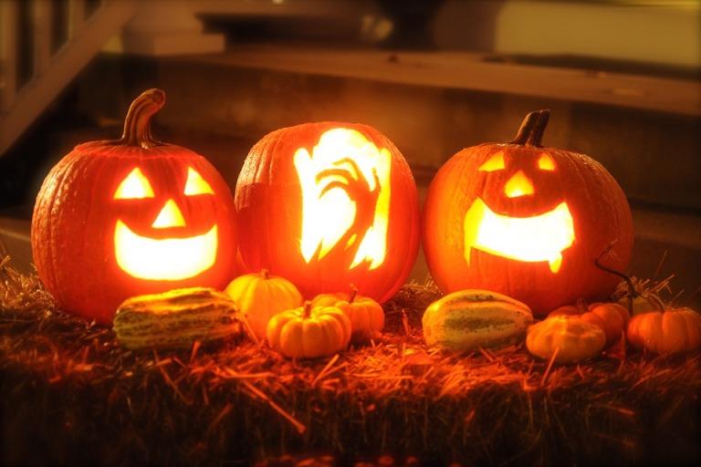 Autumn Halloween Horror October Pumpkin Orange