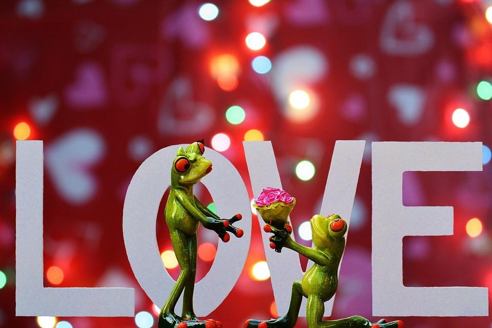 Love Romance Valentine's Day Pair Together