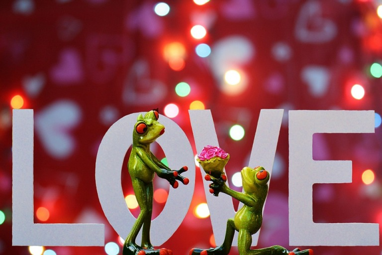 Love Romance Valentine's Day Pair Together
