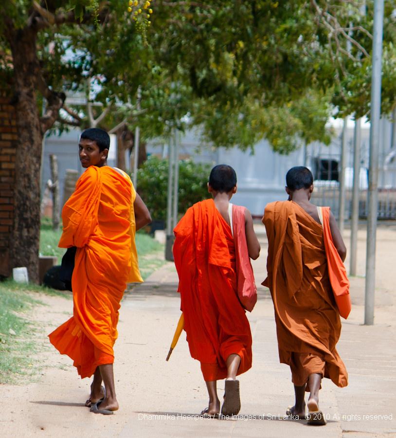 Buddhist monks at Tissa