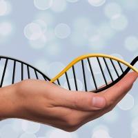 DNA (A Poem)