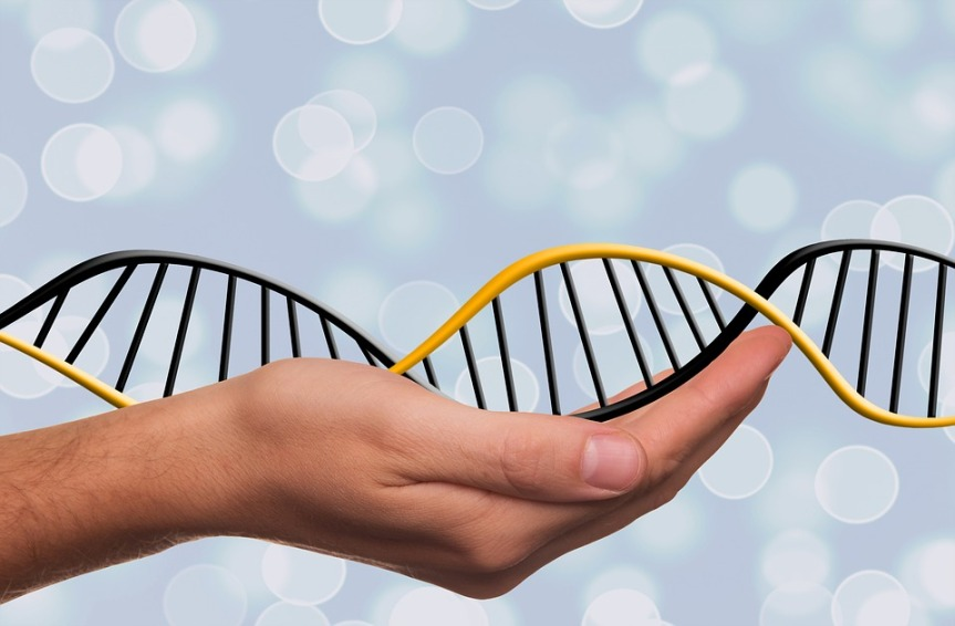 Deoxyribonucleic Acid Dna Symbol Dns Genetics